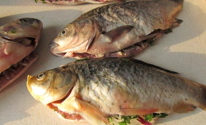 Как да познаете прясната риба за Никулден