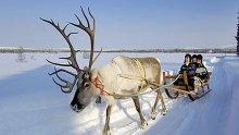 Топлият вкус на студената Финландия